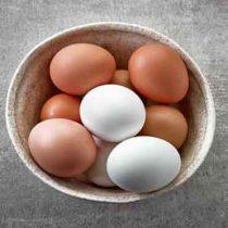 تخم مرغ زرده طلایی نیلوپر